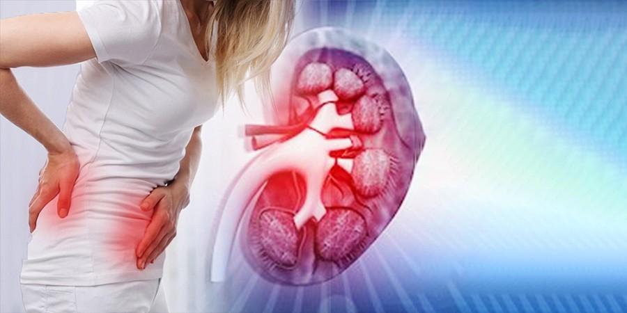 Kidney Transplant Treatment In Delhi Dr Rudra Acharya